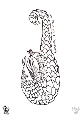Drawn for the ONCA Making Tracks show and the Pangolin Trail.