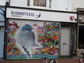 Christams shutter for Bluebird Tea co.